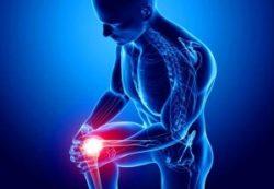 МРТ суставов — современные технологии для ортопедии